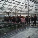 Καλλιέργεια spiroulina-platensis στην Θερμοπηγή Σιδηροκάστρου,Σερρών
