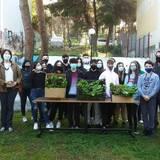 Η περιβαλλοντική ομάδα